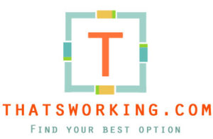 thatsworking.com
